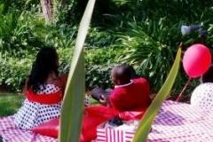 Picnic B Couple alleen