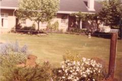 Mini Du Plessis garden 1